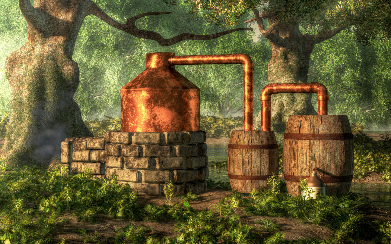 An old moonshine distil in the woods