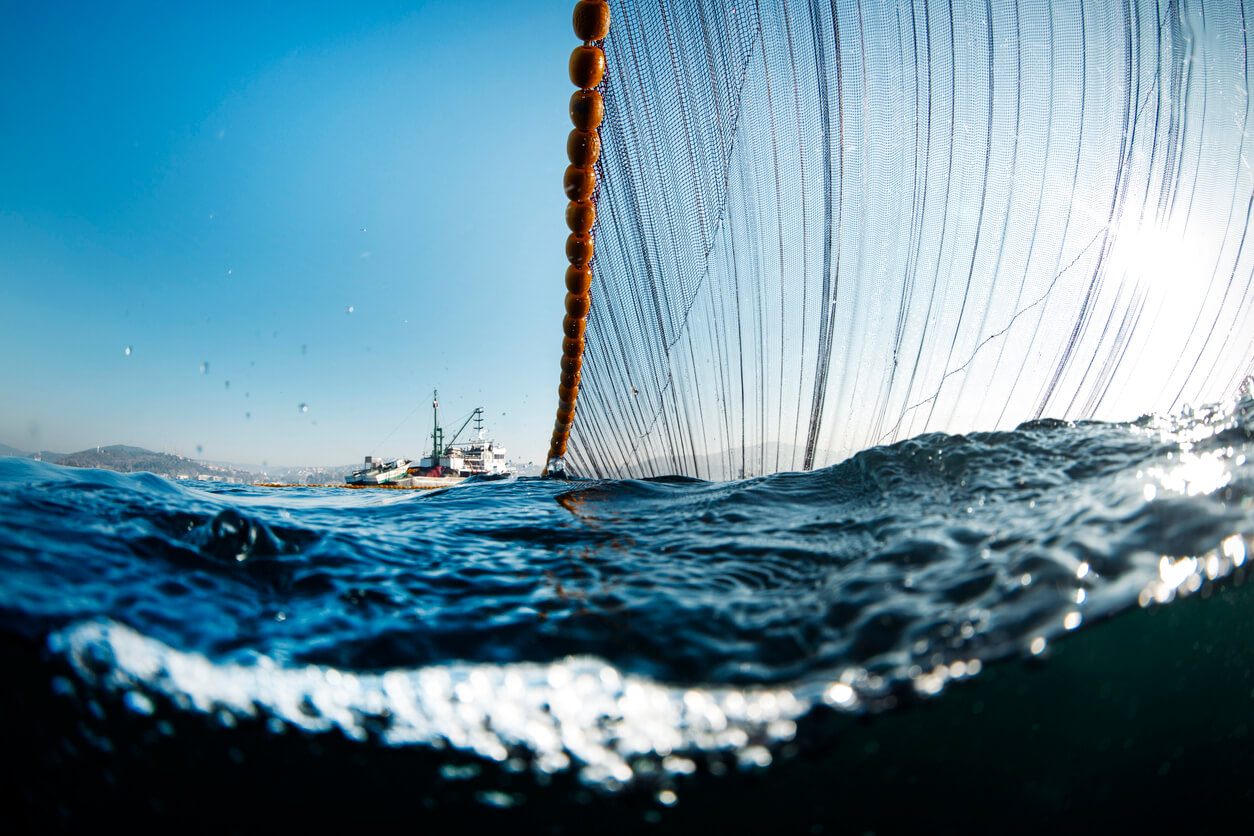 Two trawlers pulling a large net. One of the most destructive overfishing methods