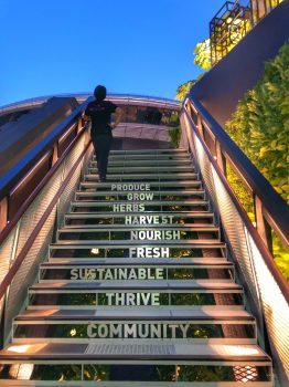 sustainable staircase with quote