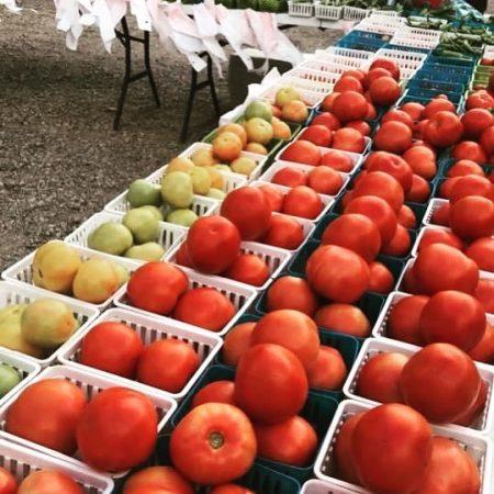 Downtown Waxahachie Farmers Market